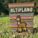 Altiplano_pudełko